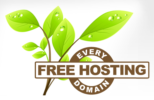 Free Web Hosting with Every Domain